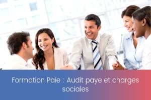 Audit paye et charges sociales – image – site
