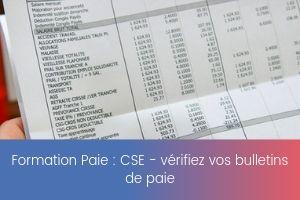CSE _ vérifiez vos bulletins de paie – image – site