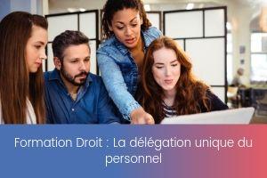 _La délégation unique du personnel – image – site
